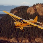 Piper PA-18 with Micro VGs