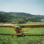 Piper Cub with Micro VGs
