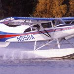 Maule M-7-235B on Floats with Micro VGs